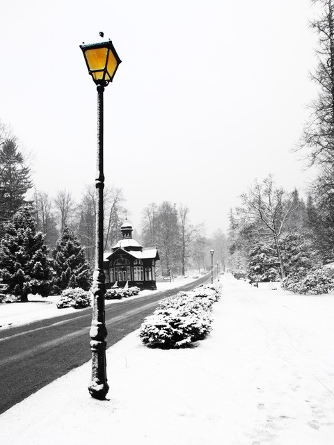 Verschneite Landstraße